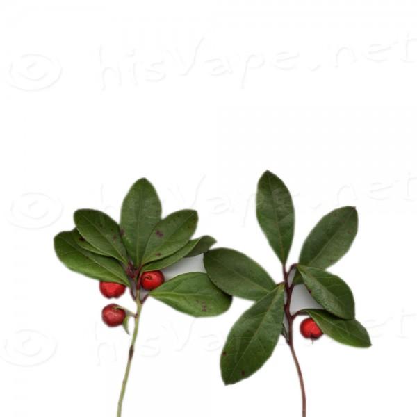 Wintergreen flavour