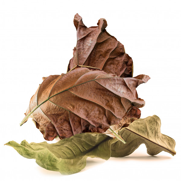 9 Leafs Tobacco Aroma